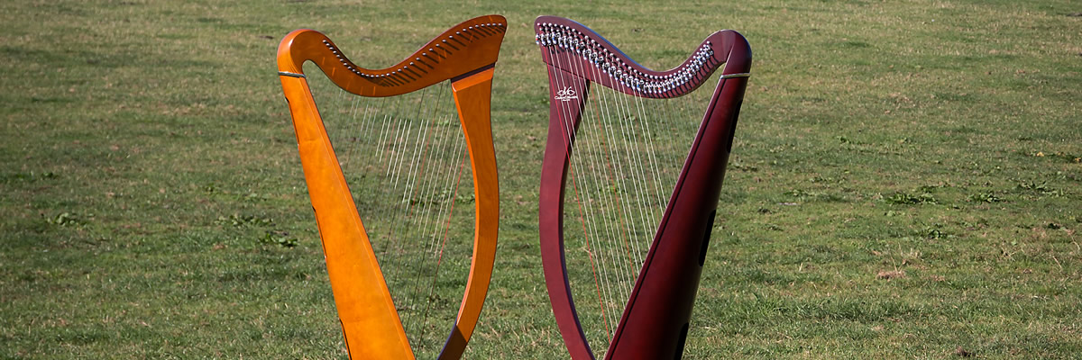 Telynau Tandderwen Harps for hire in North Wales