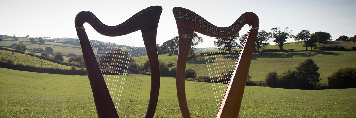 Harp hire North Wales